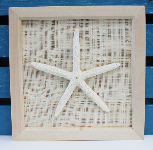 Framed White Finger Starfish