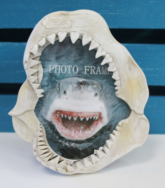 Shark Jaws Picture Frame