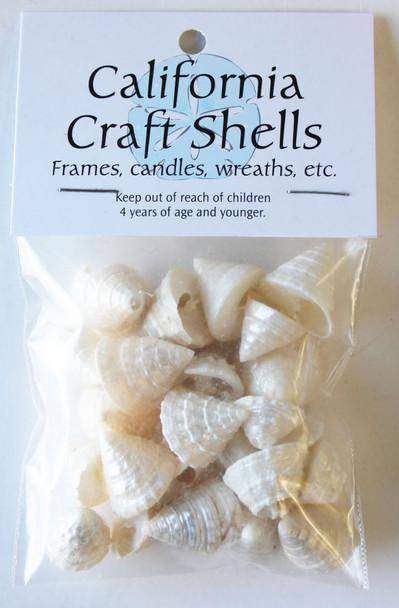 Pearl Trochus Craft Bag