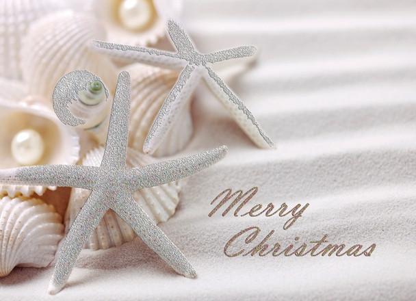 Seashells & Pearls Glitter Card