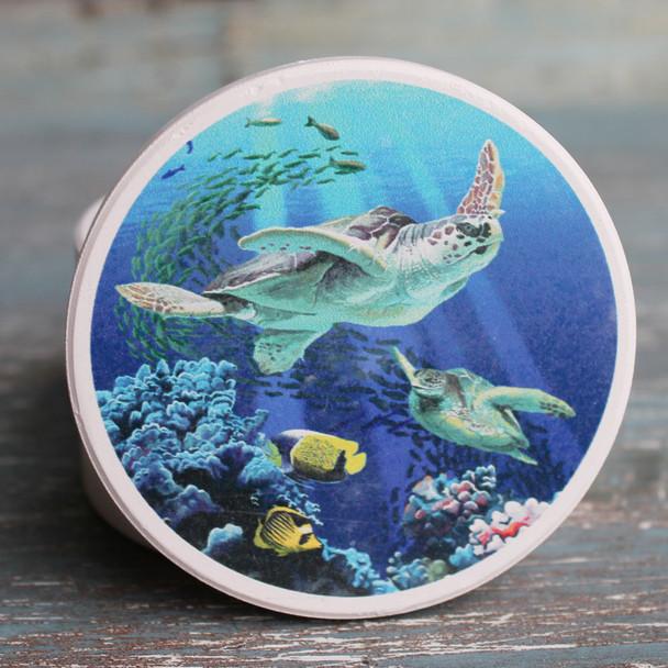 Sea Turtles Car Coaster