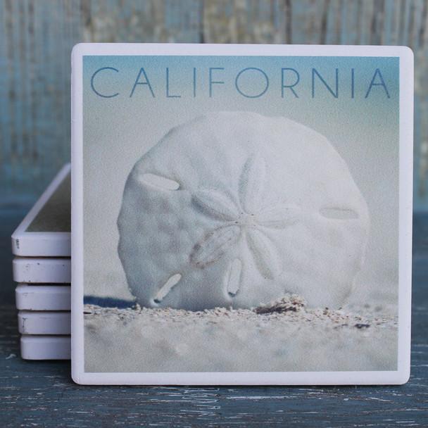 California Sand Dollar Coaster