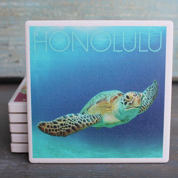 Honolulu Sea Turtle Coaster