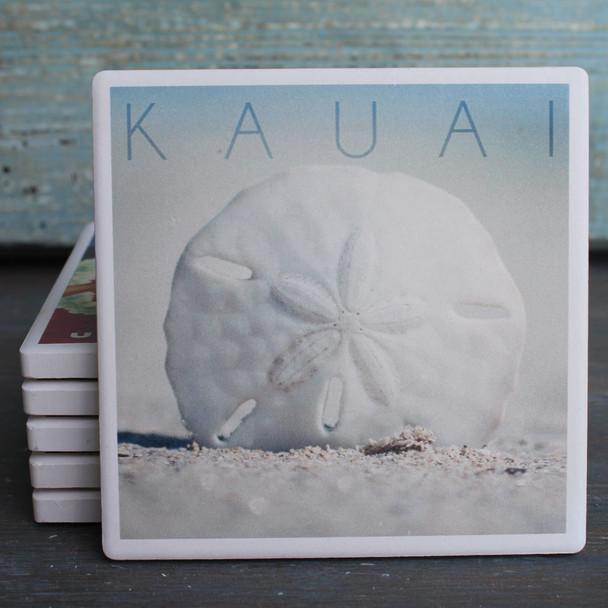 Kauai Sand Dollar coaster