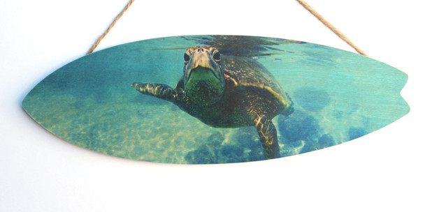 Sea Turtle Closeup Surfboard Sign