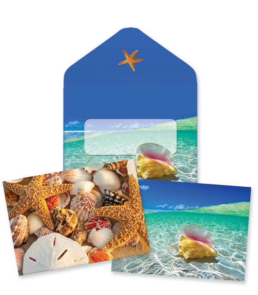 Seashells Note Cards