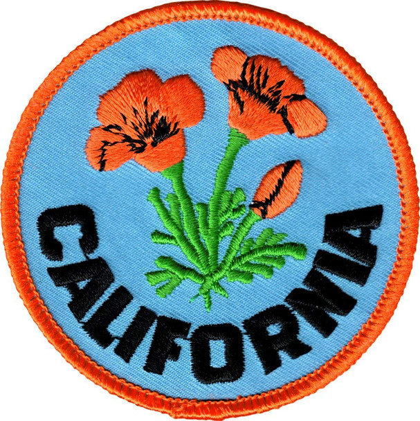 California Poppies Patch