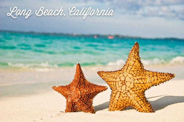 Long Beach Starfish Car Coaster