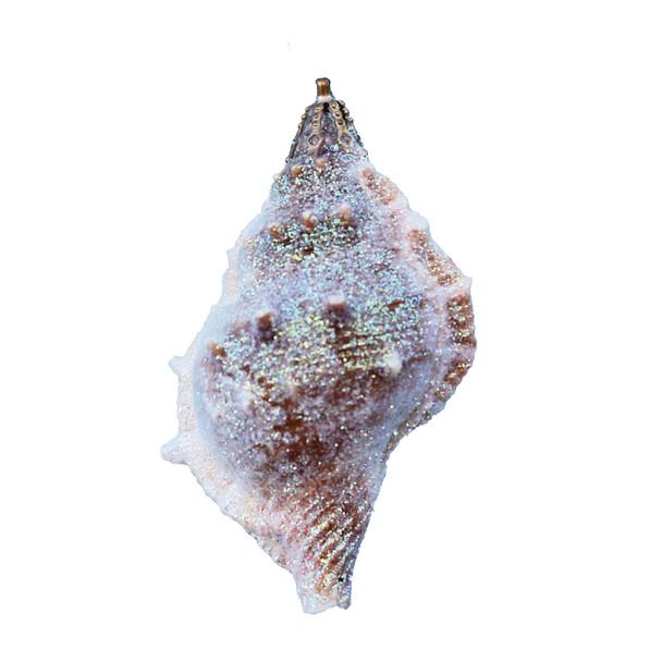 Bursa Shell Glitter Ornament