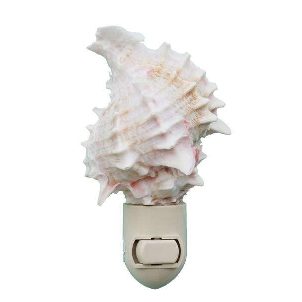 Pink Murex Shell Night Light