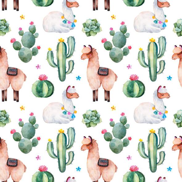 PUL Cactus Llama