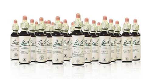 Bach Flower™ Single Essences - 38 Choices to Naturally Heal Emotions!