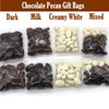 Chocolate Coated Pecans treat Bags