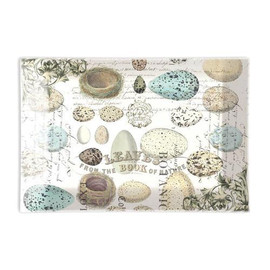 Specifically to fit our large-size bath soap bars. Each curved piece of translucent lightweight glass is beautifully decorated and hand washable. Individually boxed.