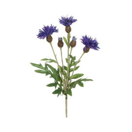 "The bachelor button flower, cornflower, or centaurea, is a classic garden flower that has been celebrated for centuries. Outdoors, these plants require minimal care, but our version commands even less - simply shape into your favorite bouquet and enjoy for years to come. Dimensions:	5""L x5""W x10""H Weight:	.80oz"
