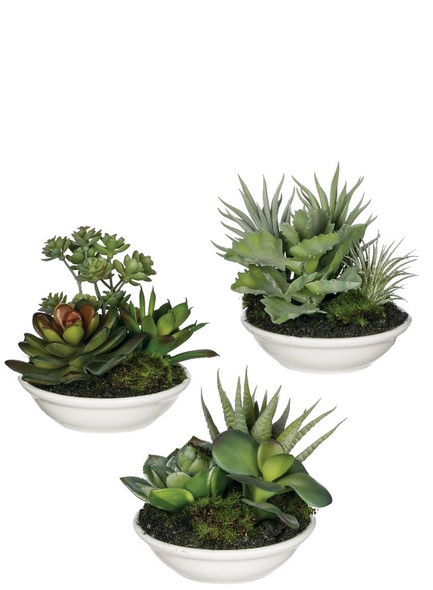 """4"""" porcelain bowl with a variety of faux succulents! Kalanchoe, jade plant, sedum, and more look and feel so real! Each mini bowl will have a random mix of assorted succulent types. Beautiful and carefree decor for anywhere in your home. Sold individually"""