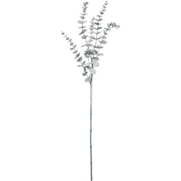 """The eucalyptus is a florist's dream and once coated in a blanket of snow, a seasonal necessity. A graceful foundation and a great accent to pine, this is a stem fundamental to any designer's repertoire. Dimensions:11""""L x6.5""""W x28.5""""H Weight:1.80oz"""