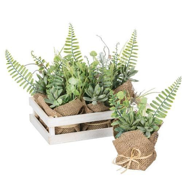 """Faux doesn't mean it's faux-pas - this crate full of botanicals bring the natural beauty of the outdoors, inside for display. Smaller in stature, this is a creative way to go green without the time-consuming effort. Dimensions:9.5""""L x6.25""""W x7""""H Weight:15.00oz"""