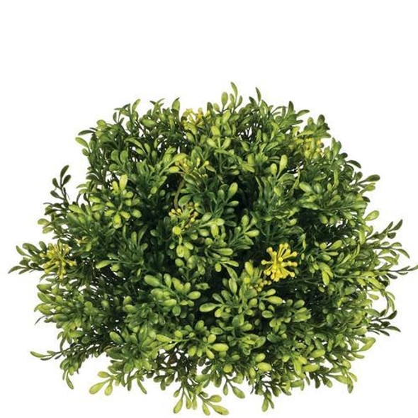 """Add a fresh touch of green to your area with this tea leaf half orb. It's easy to toss these into a bowl, sit beside and arrangement, or embellish a candle holder, all to give a lifelike touch to any space. Dimensions:7.5""""L x7.5""""W x5""""H"""