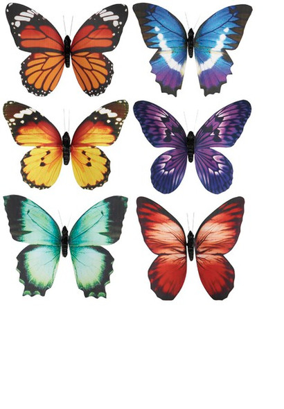 Butterfly refrigerator magnet in assorted colors
