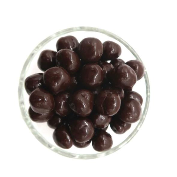 Dark Chocolate Caramel Sea Salt Balls 12 oz Candy The Nut House