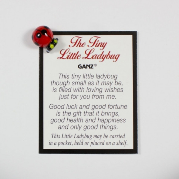The Tiny Little Ladybug is a small glass Ladybug keepsake to carry with you or keep on a shelf. Makes an adorable addition to a fairy garden and a thoughtful gift to a special friend or coworker.