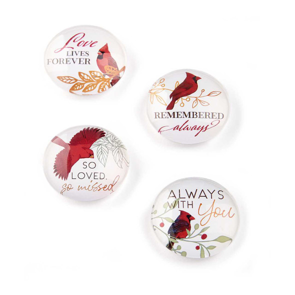 Memorial Glass Cardinal Magnet Magnets The Nut House