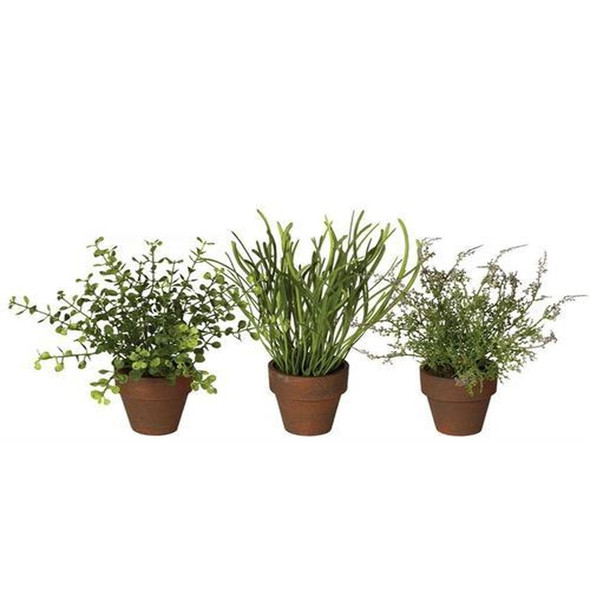 """Flourishing grasses sitting pretty in your window sill, that is what you'll have with this popular set. The simple pots hold a variety of species of lifelike grassy greens, creating so many design possibilities. Dimensions:8""""L x8""""W x7""""H 10""""L x10""""W x6""""H 10""""L x10""""W x7""""H Weight:2.80oz 2.80oz 3.10oz.  Sold individually."""