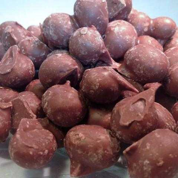 Double Dipped Chocolate Peanuts 16 oz Candied Peanuts The Nut House
