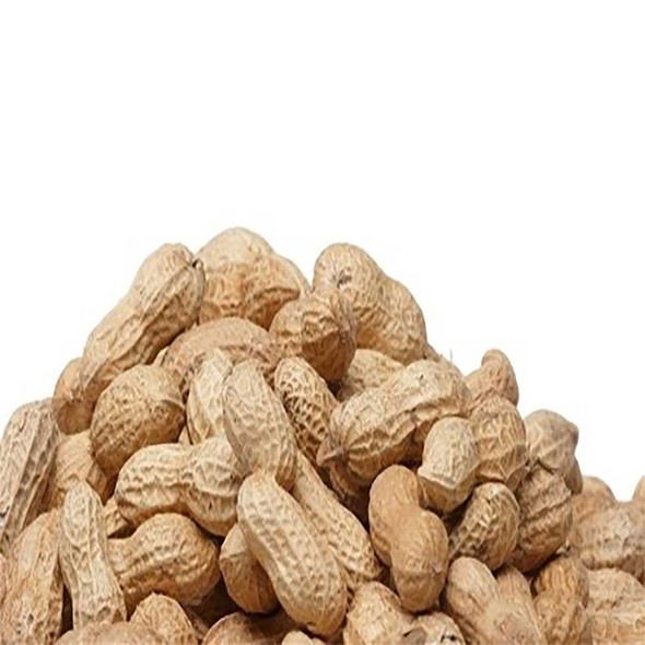 Cajun Peanuts In Shell 2 lbs Salted & Spiced Peanuts The Nut House