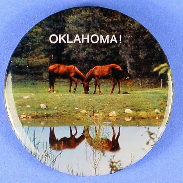 Oklahoma Horse in Field Button