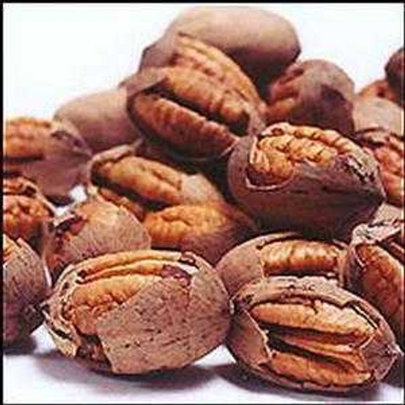 Pawnee Pecans Cracked 2.5 lb Naked Pecans The Nut House