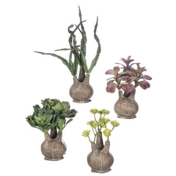 """This unique group of shapely planters are home to an eclectic mix of miniature cacti and succulent plants. Display as a collection or give as a gift, for a look that creates an organic aesthetic without any of the worry. Dimensions:4""""L x4""""W x5.5""""H 4.5""""L x4.5""""W x6""""H 6""""L x4.5""""W x5.5""""H 4""""L x4""""W x9""""H Weight:3.00oz 4.00oz 4.00oz 3.00oz.  Sold individually."""