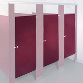 """32""""x 58"""" TP Door, Powder Coat Metal with Wrap Around hinges and ADA Hardware made February 2013 or before"""