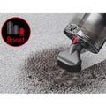 Stiff bristle brush removes stubborn dirt