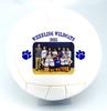 Custom Volleyballs