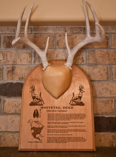 Personalized Rack Plaque