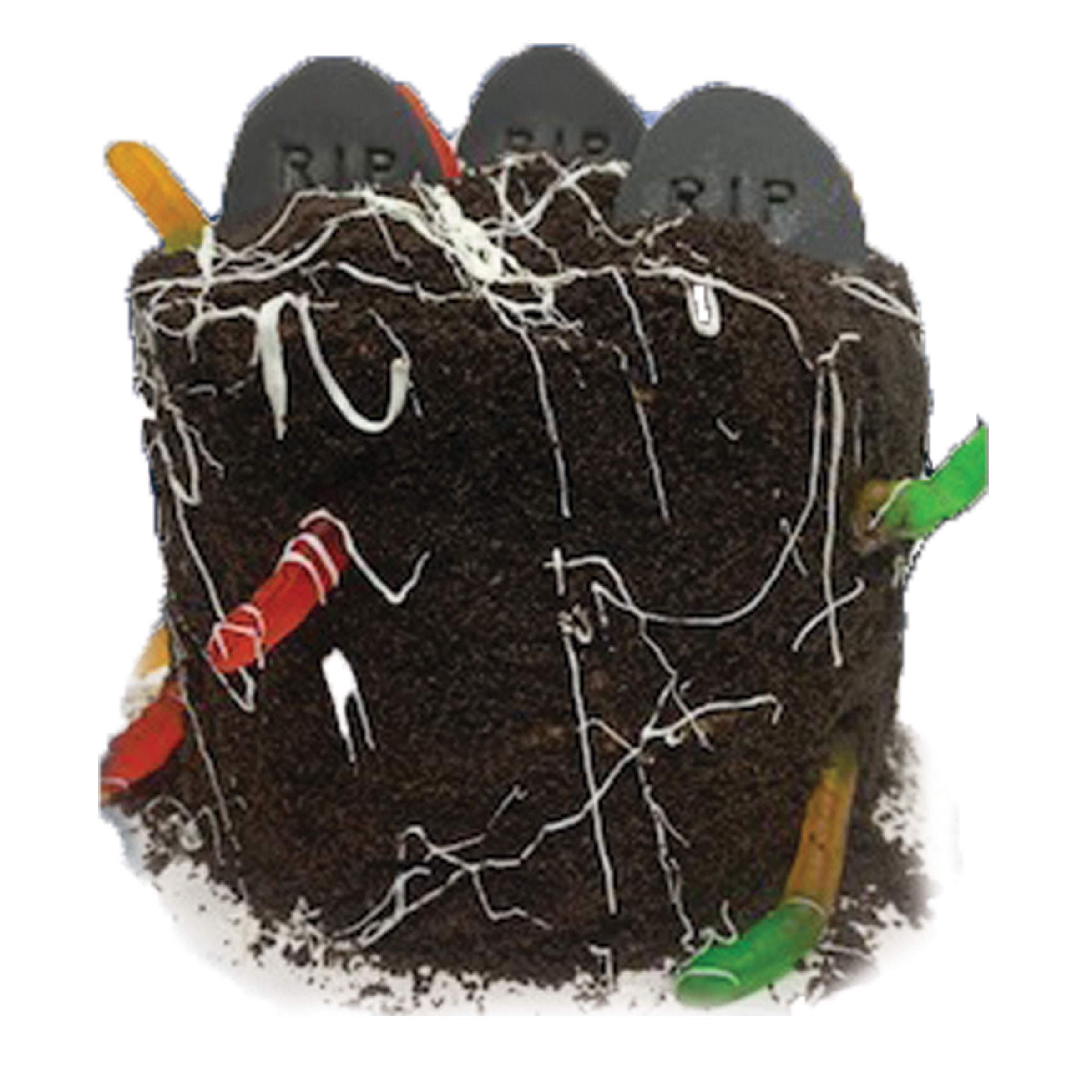 halloween-cake-worm-in-the-dirt.jpg