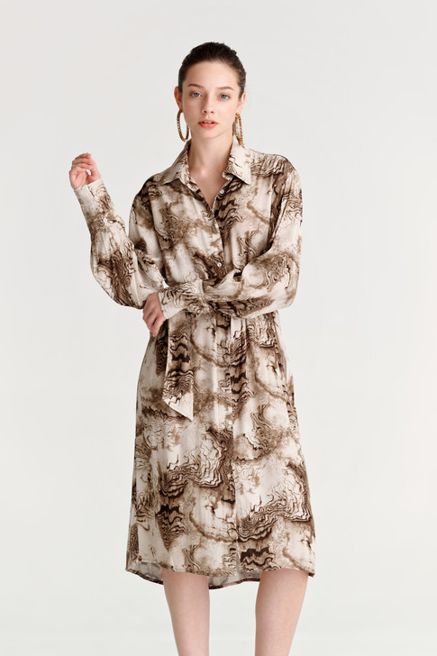 Abstract Print Shirt Dress
