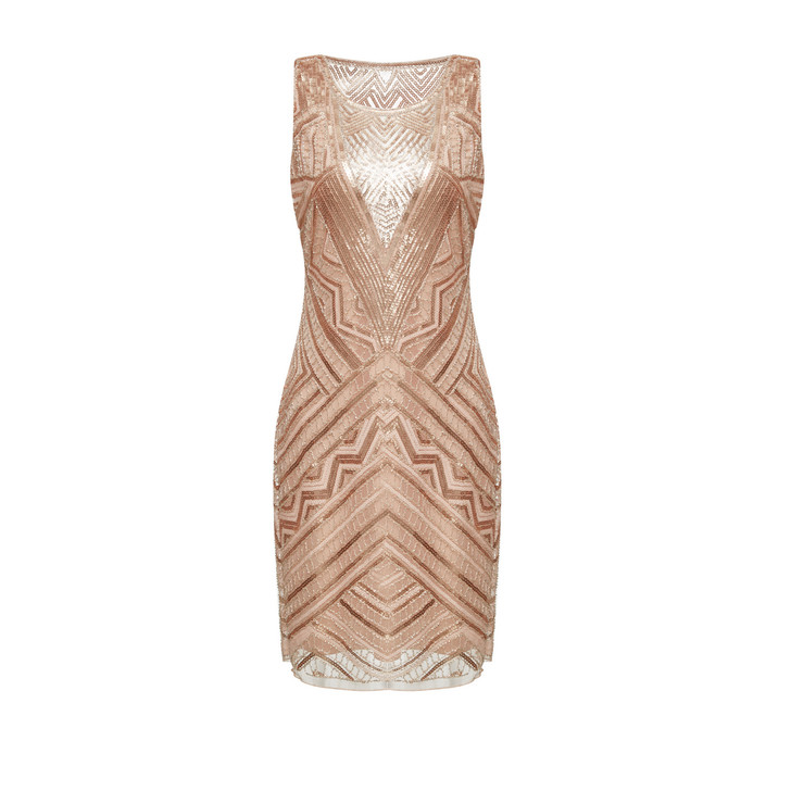 Sequin-Embroidery Fitted Dress