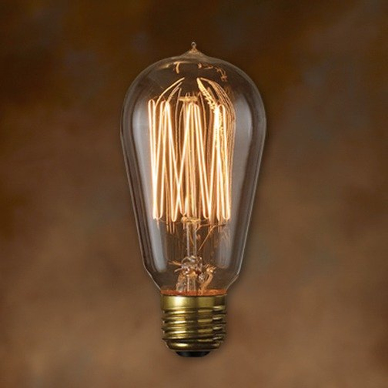 Edison Bulb Nostalgic Loop Filament Type Victorian