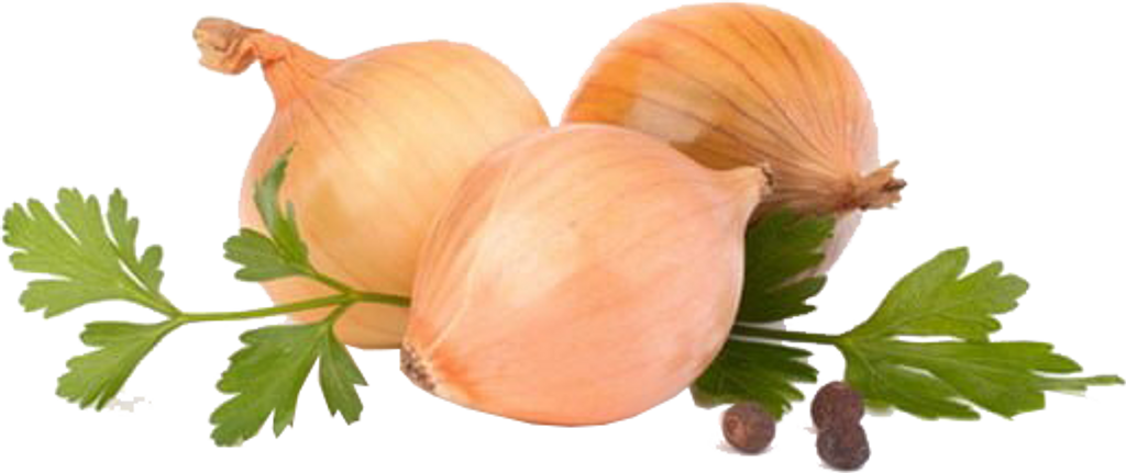 Cilantro & Roasted Onion Olive Oil 375ml