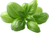 Basil Infused Olive Oil 375ml