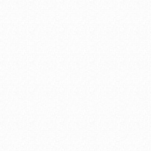 Neutrals - white/white 23917