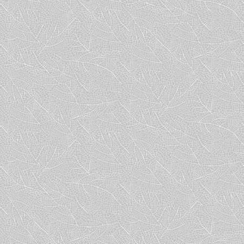 Silhouette-23991-92