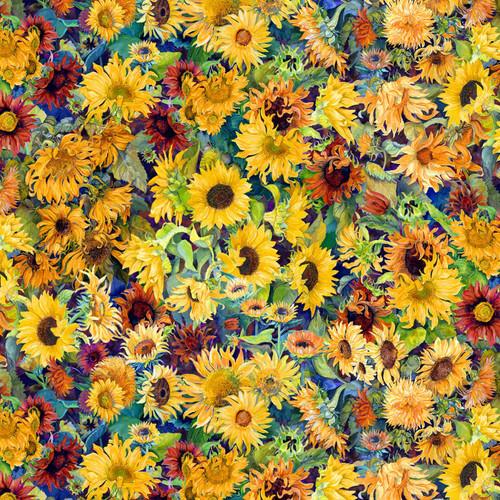 Flowers of the Sun, sunflowers