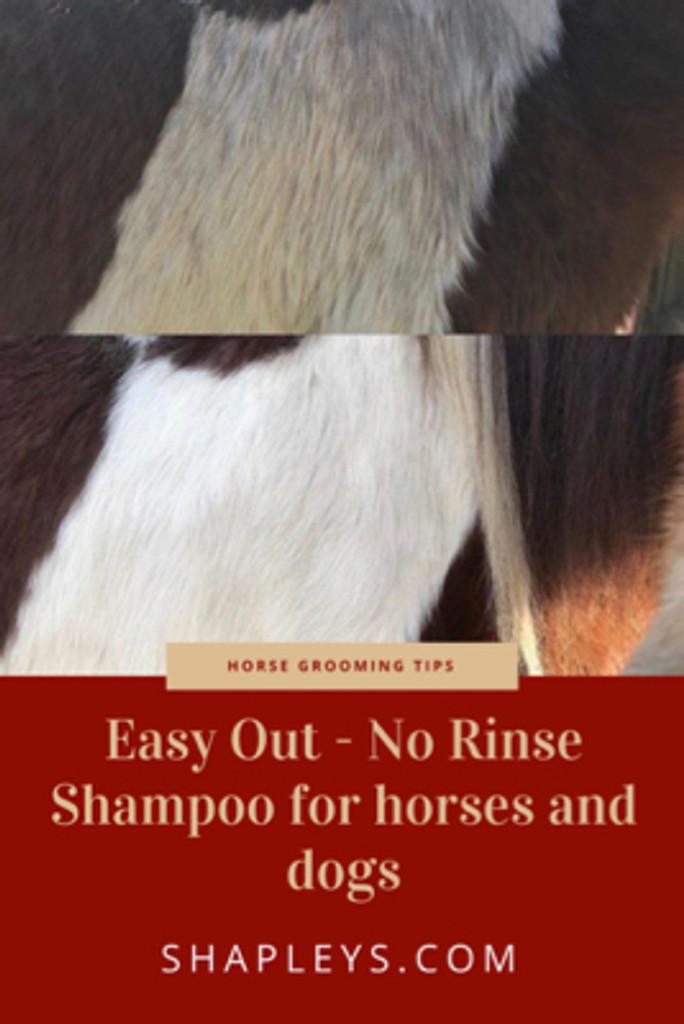 Easy Out No Rinse Shampoo