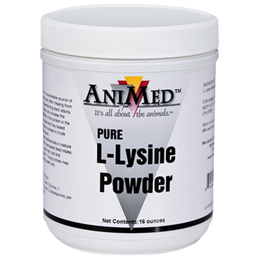 Animed Lysine powder 16 ounce jar