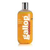 Gallop Colour Shampoo - Chestnut & Palomino