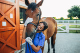 Five Great Topical Products for Horse Treatments